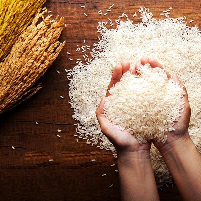 دیگ برنج صنعتی